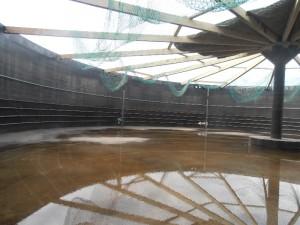 Gasspeichersanierung Biogasanlage mit Gasspeicherfolie Unterkonstruktion